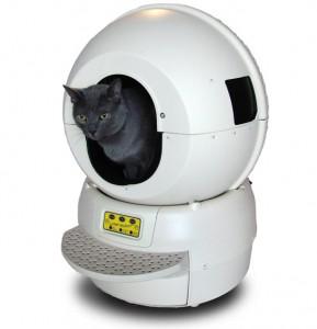 La caisse du chat robotisée !